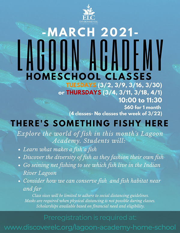 Lagoon Academy March 2021.png