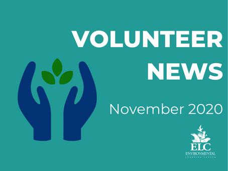 Environmental Volunteer News November 2020