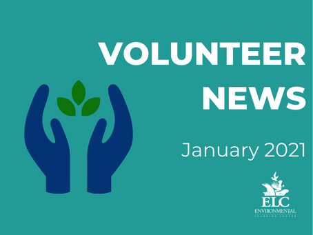 January 2021 Environmental Volunteer News