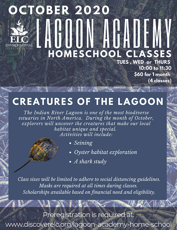 Lagoon Academy October 2020.png