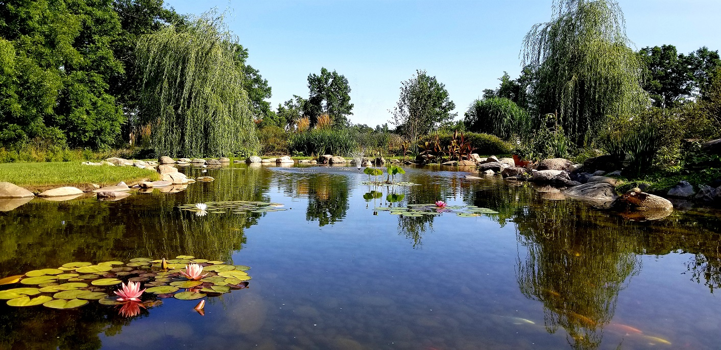 Pond Site (1)