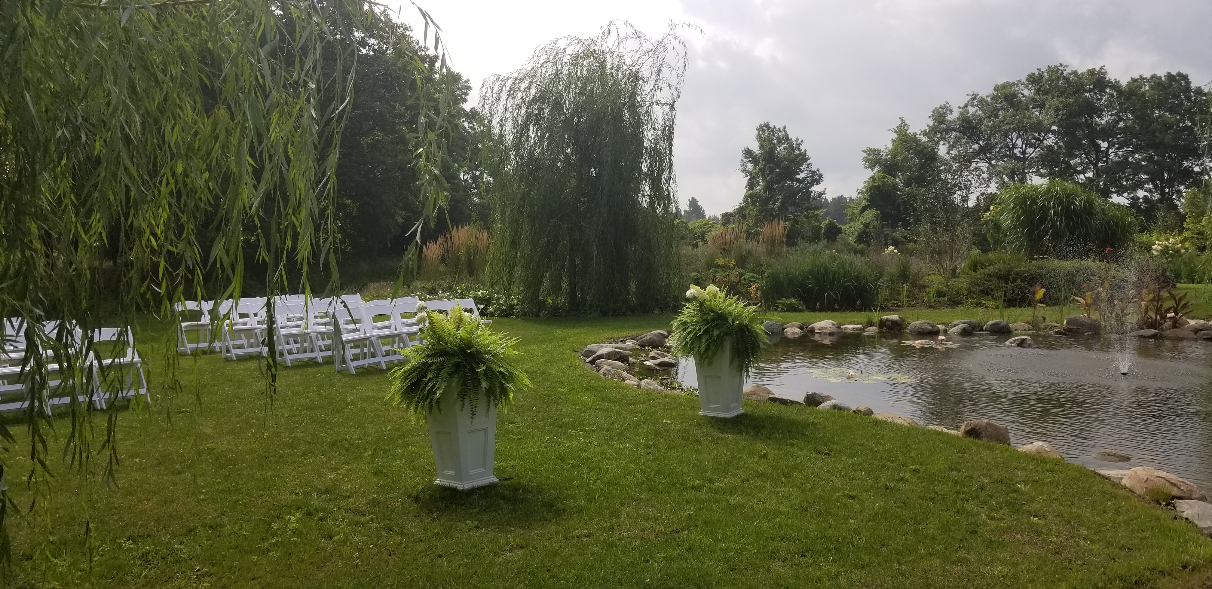 Willow Trees at Meadow View Gardens