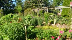 Courtyard Garden arbor