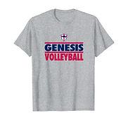V T-Shirt - GrayBlueRed.jpg