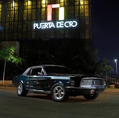 Ford Mustang_2.jpg