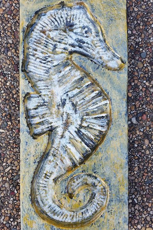Seahorse Feature