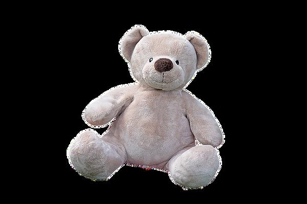 teddy-bear-1085162_640.png