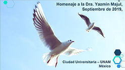 Alma_Campos_Homenaje Dra. Majul.jpg