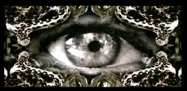Mama's Eye