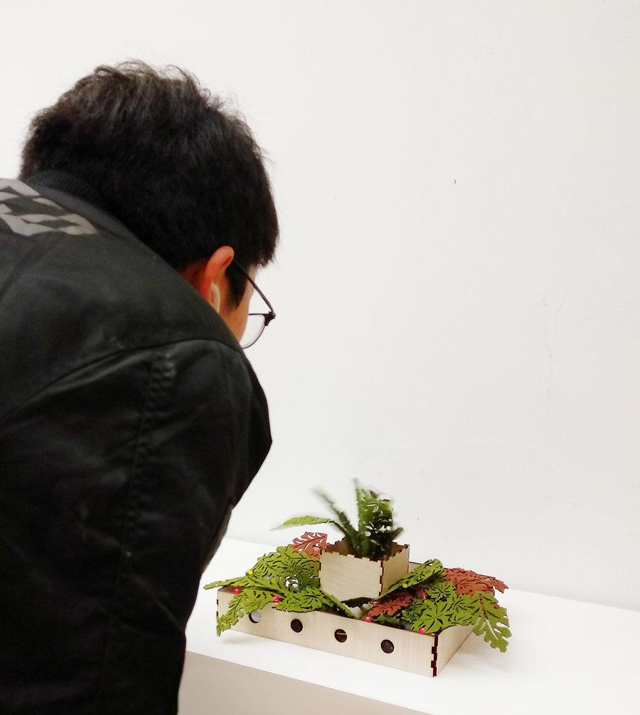 plant moving.jpg