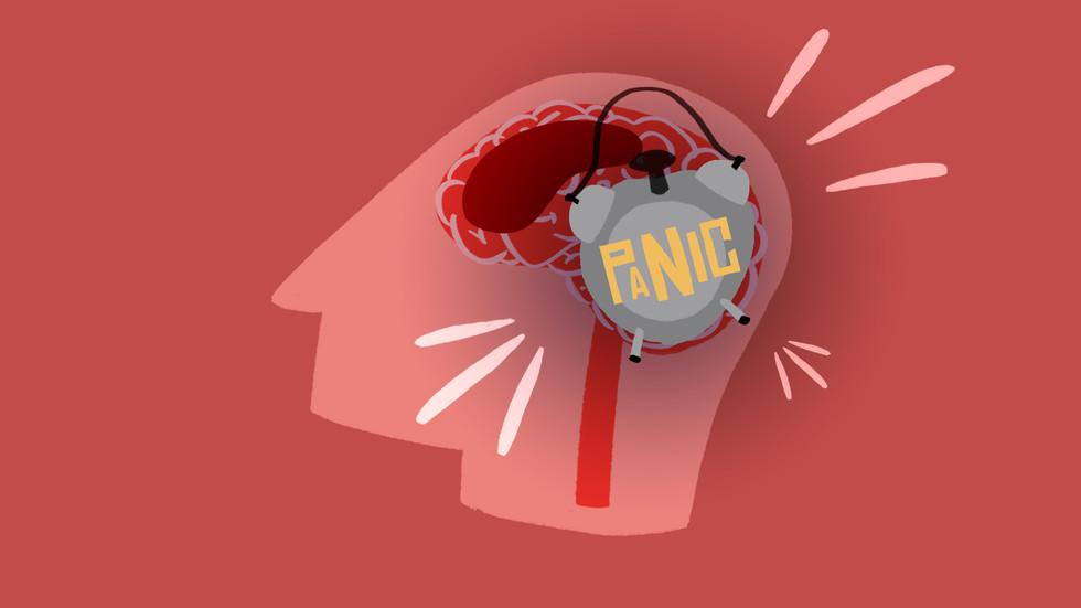 Panic Frame