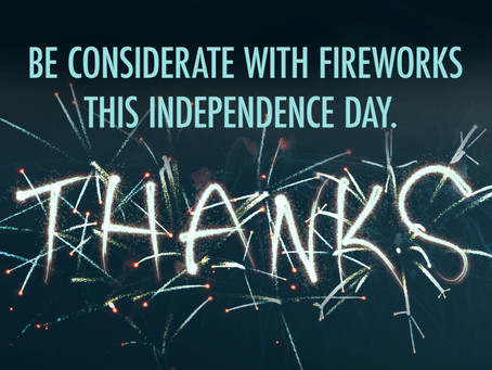 Trauma informed 4th of July (quiet please!)