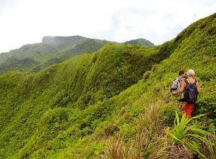 81967-Tahiti.jpg