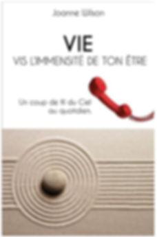 vie_par_joanne_wilson.jpg