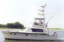 Amberjack Fishing Charters