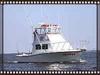 Skipper Fishing Charters