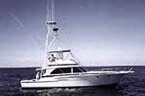 Three Sons IV Fishing Charters