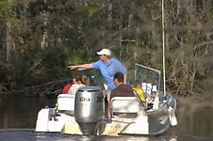 Eco Tours of South Mississippi