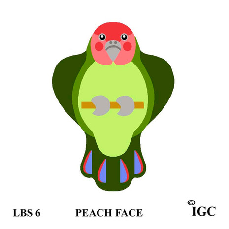 Peach Face Bird