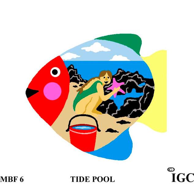 Tide Pool Fish
