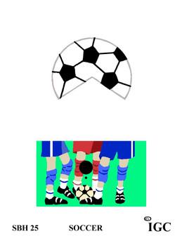 Soccer Small Birdhouse