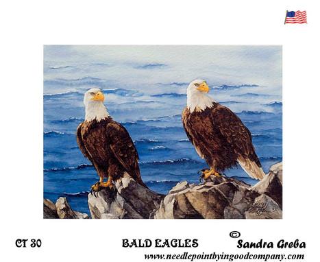 Bald Eagles - Sandra Greba