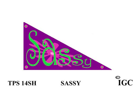 Sassy Pennant