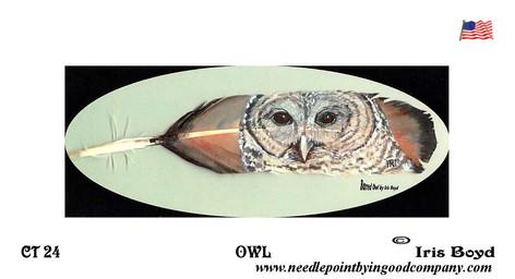 Owl - Iris Boyd