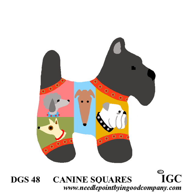 Canine Squares Dog