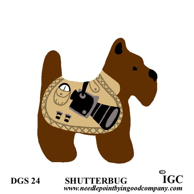 Shutterbug Dog