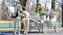 Карета с лошадьми на свадьбу.