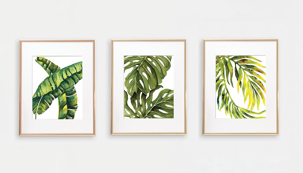 3 Palm Leaves Art Prints