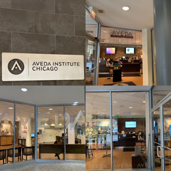 Aveda Institute Chicago