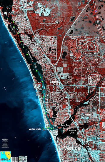 SMF141 Venice Beach Florida