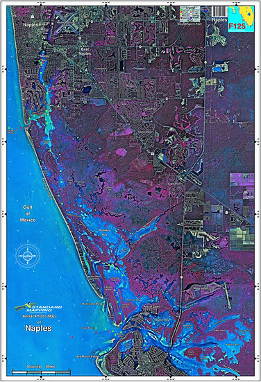 SMF125 Naples Florida