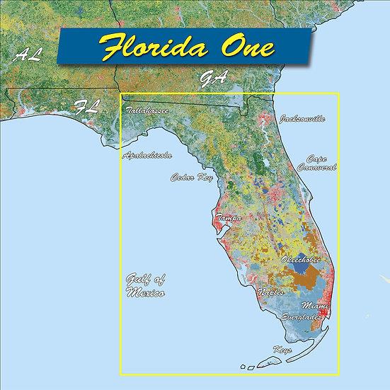 Florida One