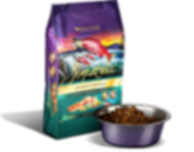 Zignature_PackageFood_Dry_Salmon.png