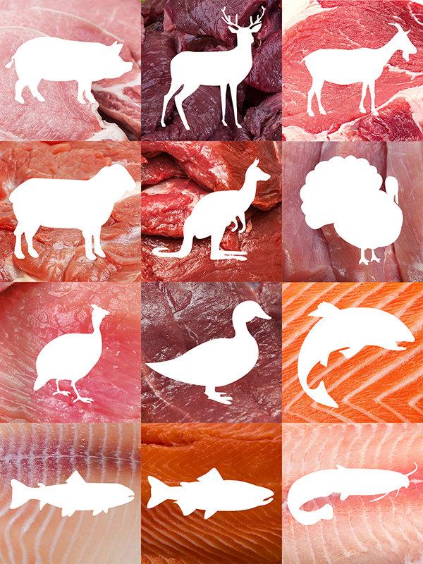 meat_square_collage_3x4_2018_v3.jpg
