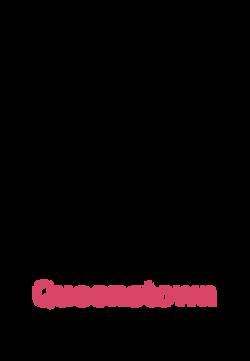 Sidekick Queenstown