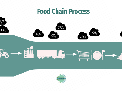 Vectors of Waste in the Food Chain