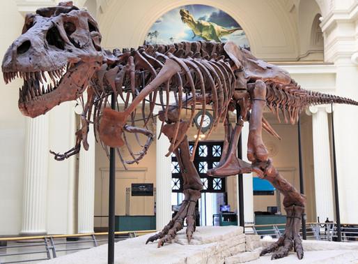 101 Dinosauri dall'università di Alberta