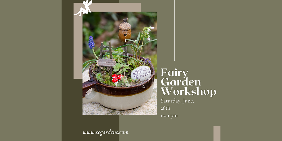 Fairy Garden Workshop | 1:00 PM
