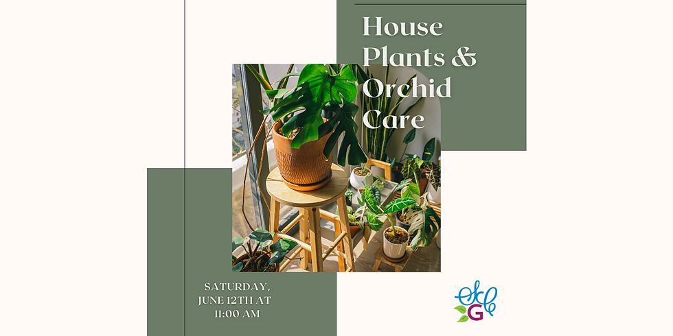 House Plants and Orchid Care