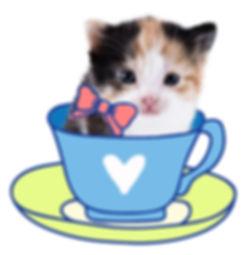 kitten-cup.jpg