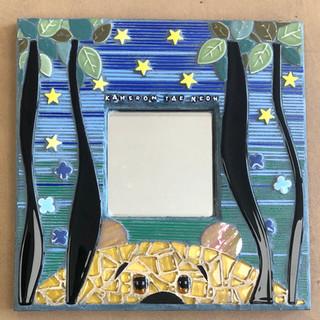 Baby Kam mirror.jpg