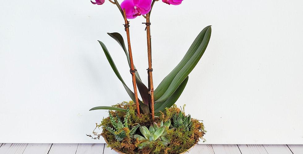 Orchid Garden Pedestal