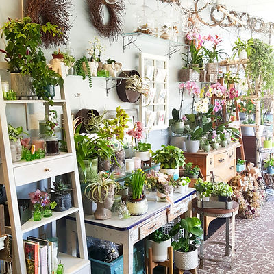 BloomingBlossomsshop3.jpg