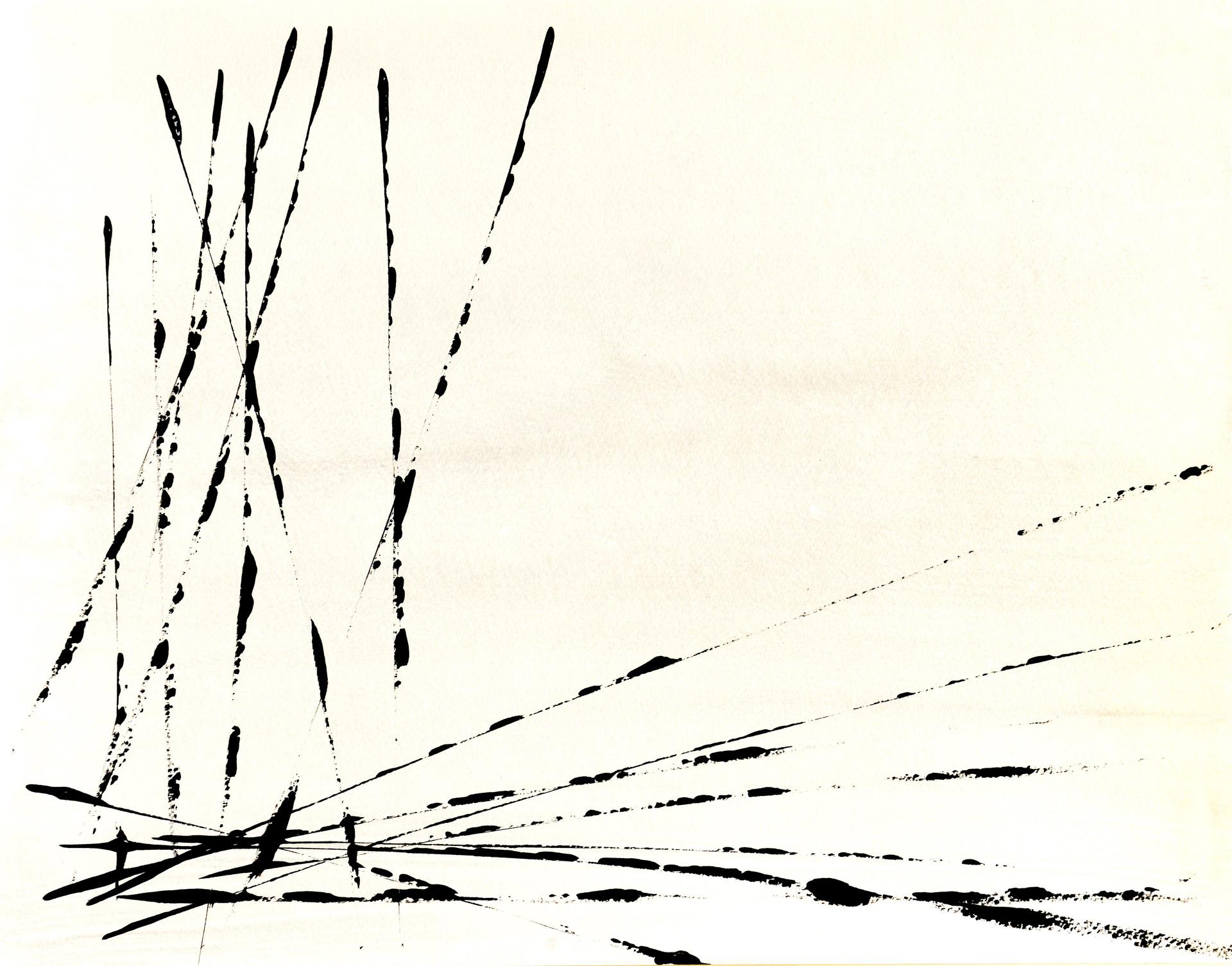Lignes 23.jpg