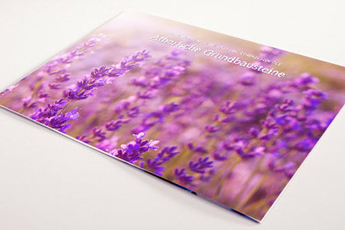 """Folder """"Ätherische Grundbausteine"""" von Young Living"""