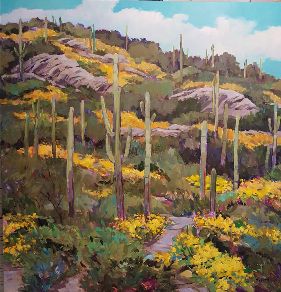 Saguaro Spring 48x48.jpg